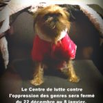 "Photo of small dog in a red coat with text ""Happy holidays! The Centre for Gender Advocacy will be closed from December 22nd to January 8th."""